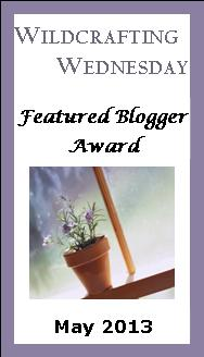 WW-Featured-Blogger-Award-Button-2013-May