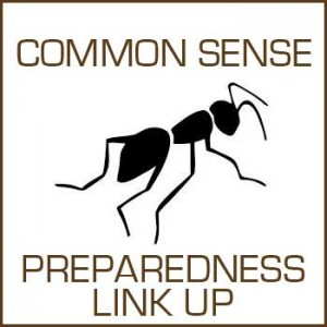 cs-preparedness-linkup-300x300