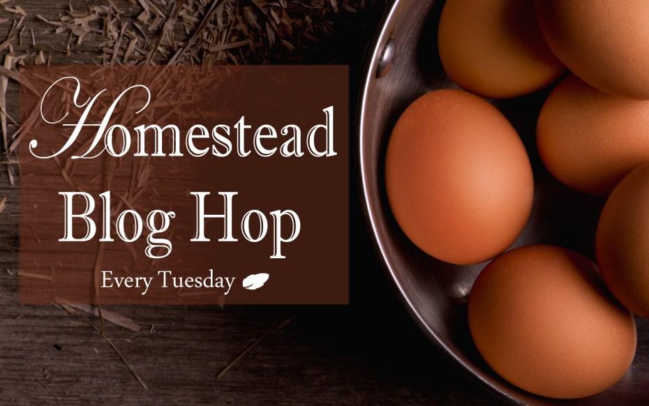 Homestead-Blog-Hop-Feature