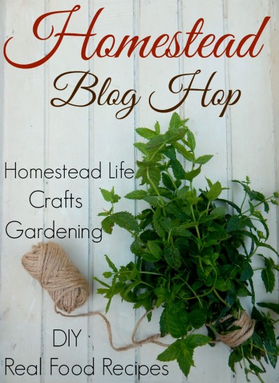 Homestead-life blog hop